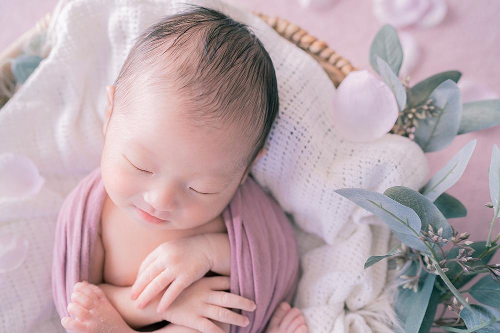 籠の中でパープルの布に包まれる赤ちゃん